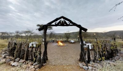 Ole Serai Luxury Camps –  Moru Kopjes 3D Model